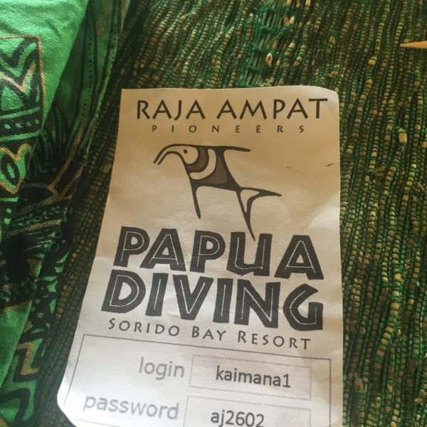 Papua Diving